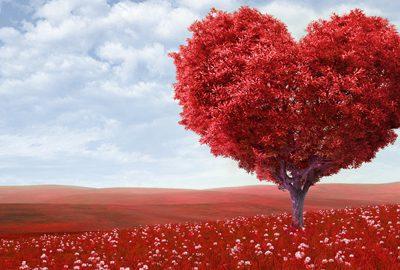Ideas para regalar en San Valentín para todos los bolsillos